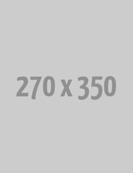 PAPRIKA SALT SEASONING (400g Box)
