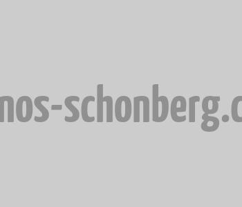 piano d'occasion schonberg