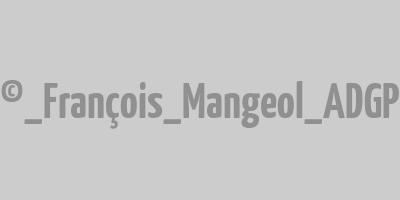 Allographes (série)
