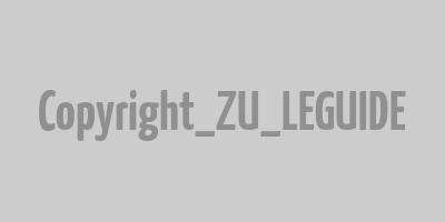 chagall vitrail exposition en famille bassins de lumière