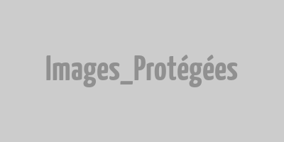Propriété rurale - 8 ha - Nord Allier