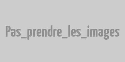 Les gaufres de Bruxelles, version Tom