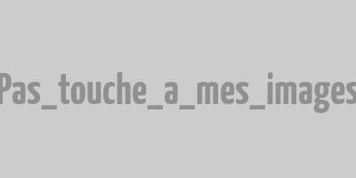 Logo de Tendance & Création, décoratrice du Chalet Milien.