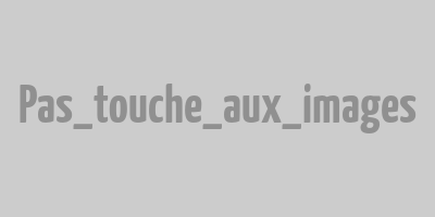 Annonce presse coquillage