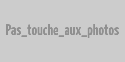 Bonhomme de Bourail à la Roche