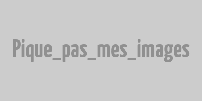 Logo Périgny Optique