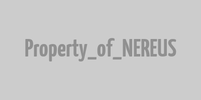 Logo nereus