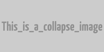 Hugo Westrelin, Collapse's team