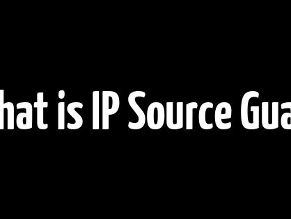 What is IP Source Guard