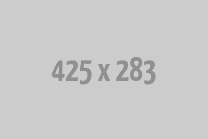 Double vitrage de remplacement VELUX