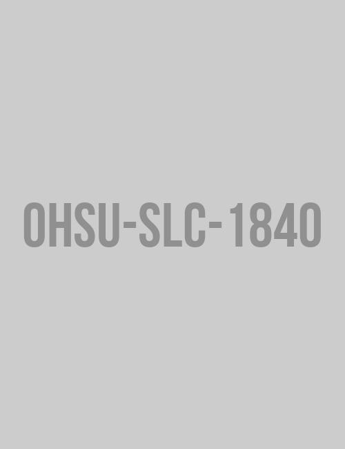 2020 Stone Lab Scholarships Flyer