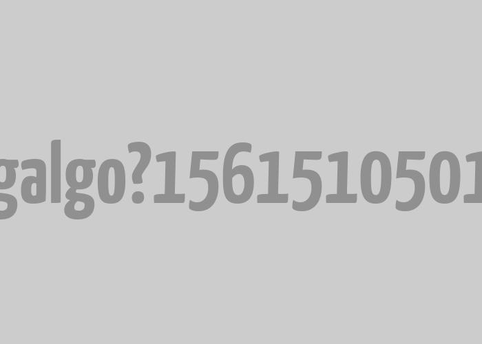 Galgo | <em>Naming</em> e imaxe para software corrector de galego.