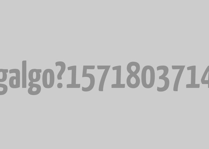 Galgo   <em>Naming</em> e imaxe para software corrector de galego.