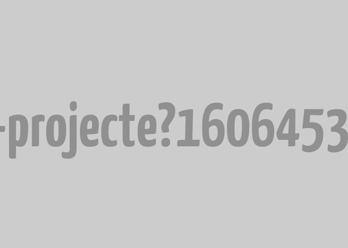 Nou Projecte  