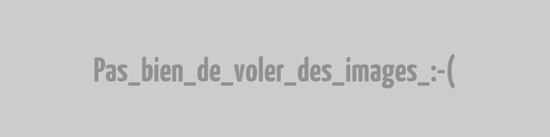Violette blanche