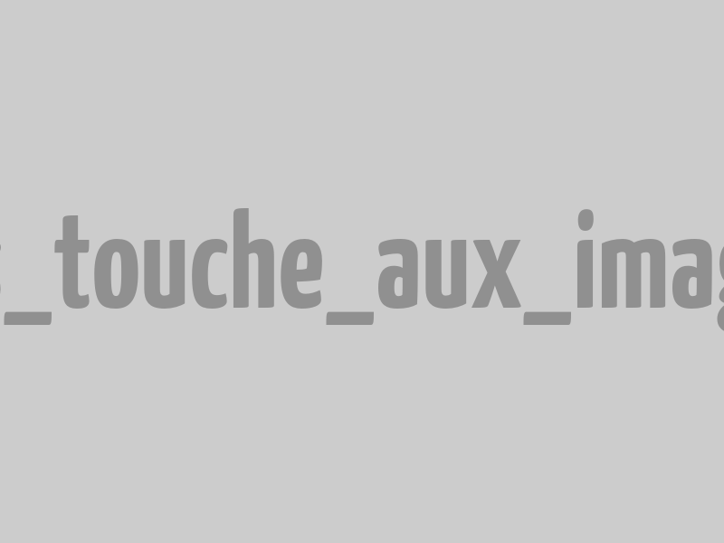 Aigrette garzette dans le Domaine du Marquenterre