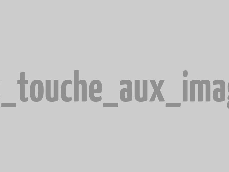 Poulain Henson lors de la Trans'Henson | © Agence Arcantide